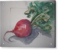 Large Radish Acrylic Print by Barbara Spies