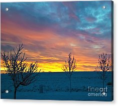 Larimer County Winter Sunrise Acrylic Print by Harry Strharsky