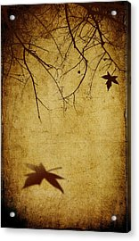 Last Breath Of Autumn Acrylic Print by Svetlana Sewell