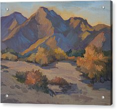 Late Afternoon Light In La Quinta Cove Acrylic Print by Diane McClary