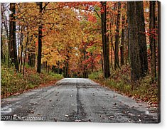 Acrylic Print featuring the photograph Late Autumn Embrace by Rachel Cohen