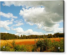 Late Summer Acrylic Print
