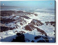 Acrylic Print featuring the photograph Lava Rock 90 Mile Beach by Mark Dodd