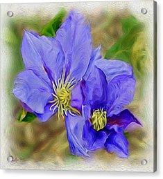 Lavendar Blue Acrylic Print