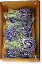 Acrylic Print featuring the photograph Lavender Bundles by Lainie Wrightson