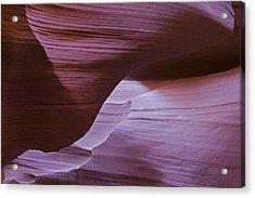Lavender Walls Acrylic Print