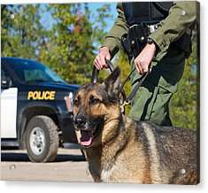 Law Enforcement. Acrylic Print by Kelly Nelson