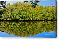 Lazy Reflections Acrylic Print by Joan McArthur