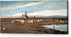 Leading The Flock To Pasture Acrylic Print by Frederick Goodall