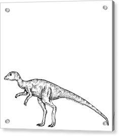 leaellynasaura dinosaur acrylic print by karl addison