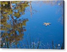 Leaf On Pond Acrylic Print