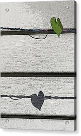 Acrylic Print featuring the digital art Leaf Shadow by Holly Ethan