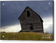 Leaning A Little 2 Acrylic Print by Bob Christopher