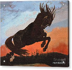 Leaping Black Horse Acrylic Print by Jerry L Barrett