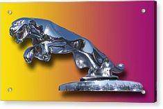 Leaping Jaguar Mascot Acrylic Print by Jack Pumphrey