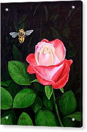 Leave My Rose Alone Acrylic Print by Jim Ziemer