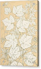 Leaves From Nature Acrylic Print by Christopher Dresser