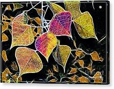 Leaves Acrylic Print by Judi Bagwell