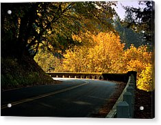 Leisurely Drive Acrylic Print