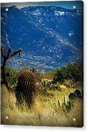 Lemmon Over The High Desert Acrylic Print
