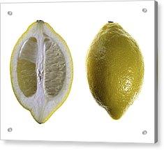 Lemon Acrylic Print by Nathaniel Kolby