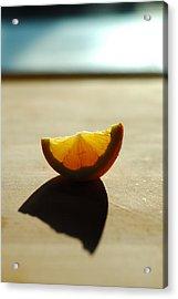 Lemon Shell Acrylic Print by Luis Esteves