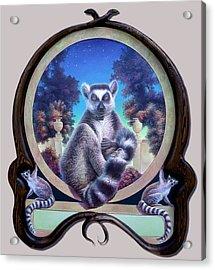 Zoofari Poster The Lemur Acrylic Print