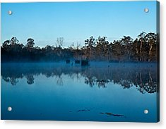 Lenthalls Dam 11 Acrylic Print by David Barringhaus