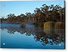 Lenthalls Dam 14 Acrylic Print by David Barringhaus