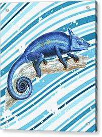 Leo Loves Lizards Acrylic Print by Nikki Marie Smith