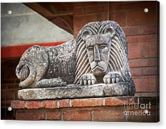 Leo On A Wall Acrylic Print by Susan Isakson