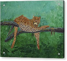 Leopard Laying On A Branch Acrylic Print
