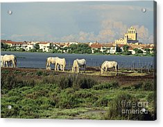 Les Saintes Marie De La Mer. Camargue. Provence. Acrylic Print by Bernard Jaubert