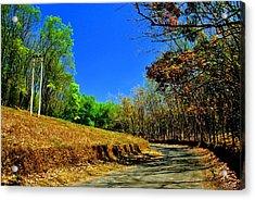 Less Traveled Ways Acrylic Print by Vinod Nair