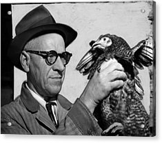 Lester P. W. Wehle, A Live-poultry Acrylic Print by Everett