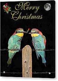 Lesvos Christmas Birds Acrylic Print by Eric Kempson