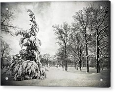 Acrylic Print featuring the photograph Let It Snow by Yelena Rozov