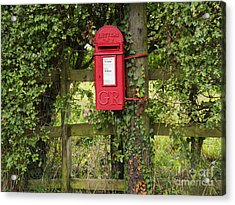 Letterbox In A Hedge Acrylic Print by Louise Heusinkveld