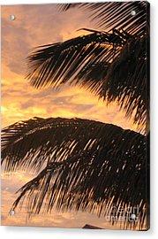 Lever Du Soleil - Ile De La Reunion Acrylic Print by Francoise Leandre