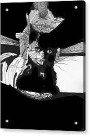 . Acrylic Print by James Lanigan Thompson MFA