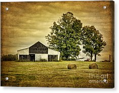 Life On The Farm Acrylic Print