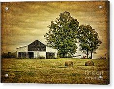 Life On The Farm Acrylic Print by Cheryl Davis