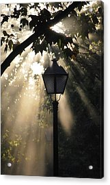 Light Acrylic Print by Amee Cave