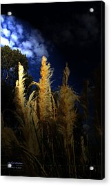 Acrylic Print featuring the photograph Light Of Hope by Itzhak Richter