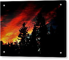 Light The Fire II Acrylic Print by Kevin D Davis