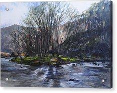 Light Through Trees At Aberglaslyn. Acrylic Print by Harry Robertson