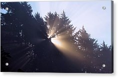 Acrylic Print featuring the photograph Lighting The Day by Katie Wing Vigil