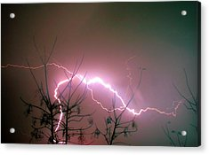 Lightning And Trees Acrylic Print