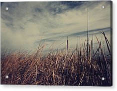 Like The Way You Used To Run Your Fingers Through My Hair Acrylic Print by Laurie Search