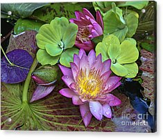 Acrylic Print featuring the photograph Lilies No. 28 by Anne Klar